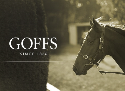Located In The Very Heart Of The Irish U0026 UK Racing And Breeding Industry,  Goffsu0027 Worldwide Reputation Is Built On The Success Of The Horses We Sell  And ...